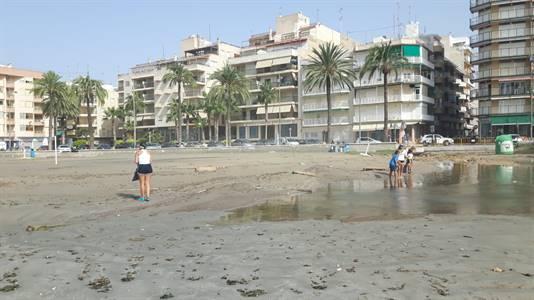 limpoieza-playas-dana-santa-pola 2019-09-16 at 18.32.37 (1).jpeg