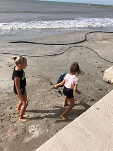 limpoieza-playas-dana-santa-pola 2019-09-15 at 14.28.13 (1).jpeg