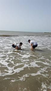 limpoieza-playas-dana-santa-pola 2019-09-16 at 18.32.42.jpeg